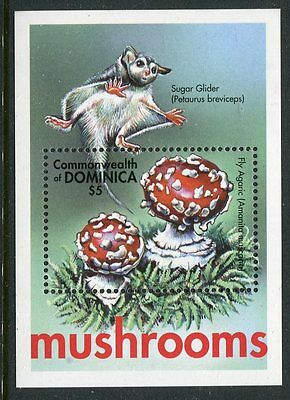 Dominica 2001 Mushrooms Fungi 1v MS #2 MNH