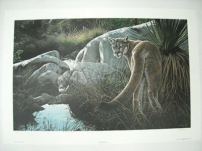 Ron Parker Creekside Cougar Mountain Lion Ltd Ed Art Print