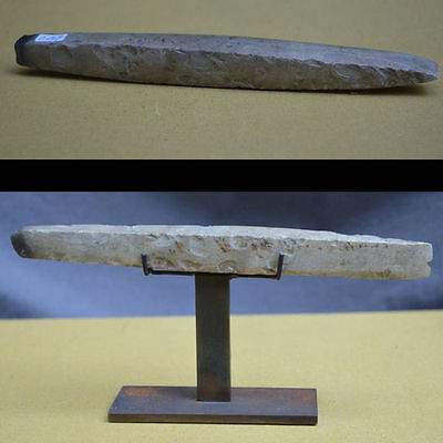 A Beautiful and large stone chisel, Neolithic ca 2500 BC Germany Denmark