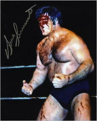 "Bruno Sammartino Autographed 8"" x 10"" Blood Photo"