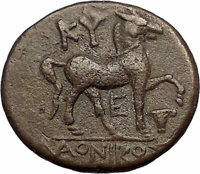 KYME in AEOLIS 250BC Amazon Horse Vase Authentic Rare Ancient Greek Coin i57277