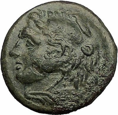 SYRACUSE in SICILY under PYRRHOS 278BC Hercules Athena Ancient Greek Coin i57269