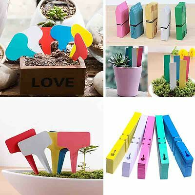 Garden Plant Pot Hanging Markers Plastic Stake Tags Home Yard Lawn Seeds Labels