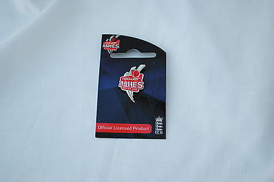 NPower 2009 Ashes Series Wickets Collectors Pin x 10 pack