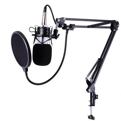 Condenser Microphone Shock Mount Arm Stand Pop Filter For Recording Studio Stage