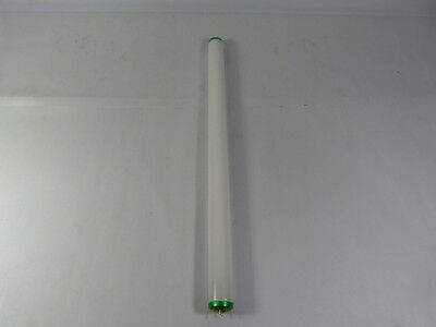 Philips F20T12/D Daylight White Fluorescent Bulb ! WOW !