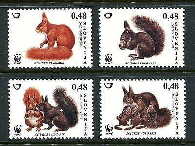 Slovenia 2007 WWF Red Squirrel MNH