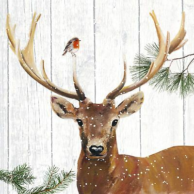 "CHRISTMAS DEER ROBIN BROWN 3-PLY 20 PAPER NAPKINS SERVIETTES 13""x13""–33X33CM"