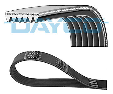 FORD Multi V Drive Belt 6PK1217 Auxiliary Ribbed Dayco 1438244 1712212 New