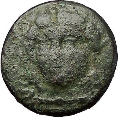 MILETOS in IONIA 260BC Apollo Lion Star RARE Authentic Ancient Greek Coin i57658