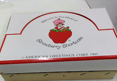 Strawberry Shortcake Display Box Of 24  Pins & Necklaces Am Greetings Corp 1985