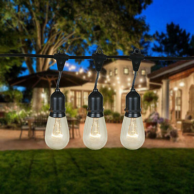 48 Foot S14 Outdoor Globe String Lights- Set of 25 S14 Clear Edison Bulbs