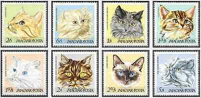 Timbres Chats Hongrie 1947/54 ** lot 15820