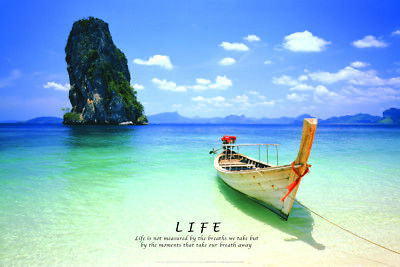Tropical Life Quote (Laminated) Poster 61X91Cm Inspiration Beach New Licensed