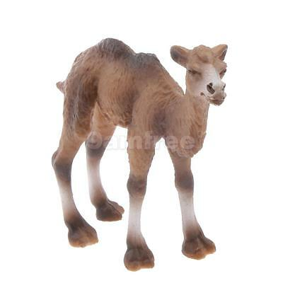 Realistic Little Camel Wild Zoo Animal Model Figure Figurine Toy Collectible