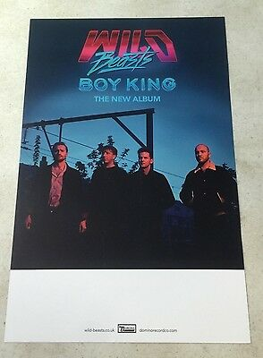 "Wild Beasts - Boy King 11"" x 17"" Official Promo Poster * Limited"