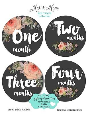 Watercolor Floral Baby Girl Month Stickers, Monthly Baby Stickers, Flowers Gift