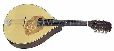 very good MANDOLA portugese Form excellent Processing Spruce & Maple
