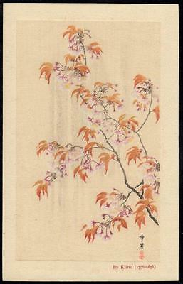 Japan Old Art PPC (A)  -  Japanese Tree (Maple) in Blossom by Kiitsu