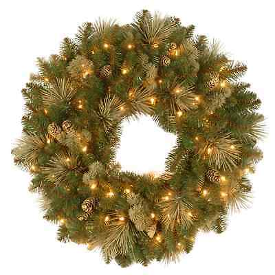 24 inch Carolina Pine Wreath with 10 Flocked Cones and 50 Clear Lights