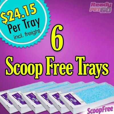ScoopFree Litter Tray Discount 6 Pack PAC19-14262