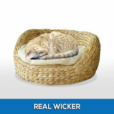 REAL Natural Wicker Cat Bed with Soft Cushion Pet Kitten Dog Puppy Mat Pad