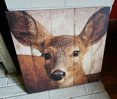LARGE DOE DEER PHOTO CANVAS PRINT SIGN Rustic Cabin Lodge Wall Home Decor NEW