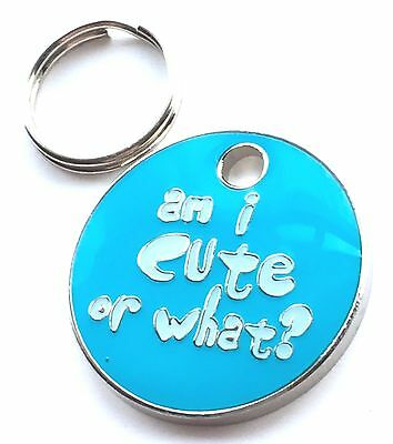 Personalised Engraved Am I Cute Or What? Dog/Cat Pet ID Tag 23mm