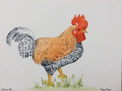 Signed Watercolour Painting Of A Cockerel By Richard Palmer 1988