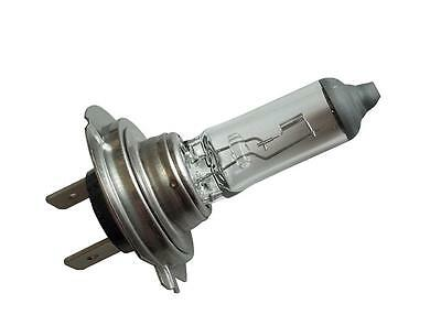 Lampada h7 rally 12v 80w px26d Philips lampadine scooter