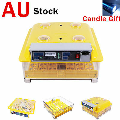 AU 48pcs Eggs Incubator Fully Automatic Digital LED Turning Poultry Chick Duck