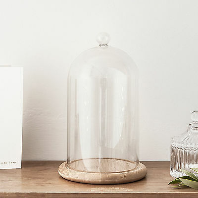 Home Decorative Accessories Glass Cloche Bell Jar Dome with Bamboo Tray Regular