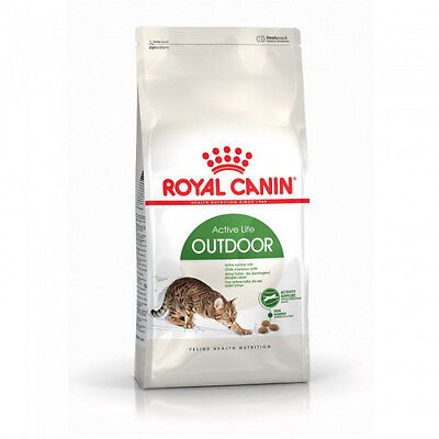 Croquettes pour chats Royal Canin Outdoor 30 Sac 4 kg
