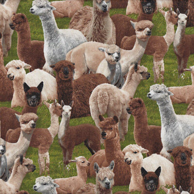 Alpacas on Green Grass Farm Animal Country  Quilting Fabric FQ or Metre *New*