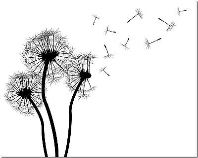 "Beautiful Dandelions Canvas Art Print Poster  24X18"" #5"