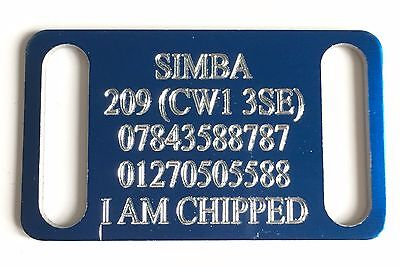 Personalised Engraved Blue Slide On Slider Dog/Cat Pet ID Tag 50mm x 30mm