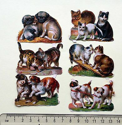 Collection 6 X  Victorian Die Cut Embossed Scraps Dogs Cats Playing Pug