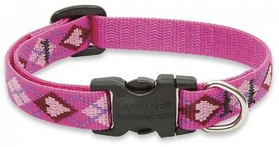 Lupine Puppy Love Patterned Adjustable Dog Collar For Small Dogs, 1/2-inch/ 8 -