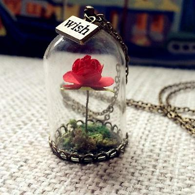 Creative Glass Wish Bottle Necklace Beauty and the Beast Enchanted Rose Pendant