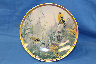 Nature's Collage Plate Collection, by Catherine McClung(Rose Morning)-  *OBO
