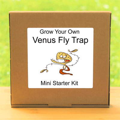 Grow Your Own Venus Fly Trap Plant Kit - Unusual Gardening Gift