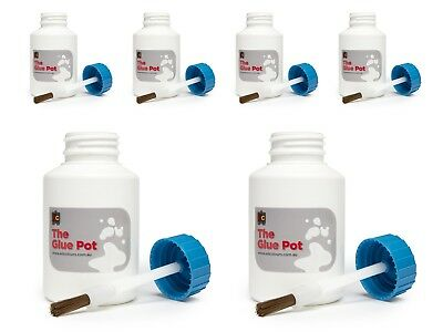 Educational Colours Safety Glue Pots 6 Pack - TGP6