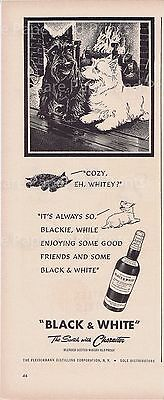 Black and White Scotch Whisky Scottish Terrier Dogs Vintage 1949Illustrated Ad