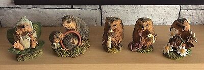 Collection Of Hedgies Ornament Xmas Gift Ideas Mums