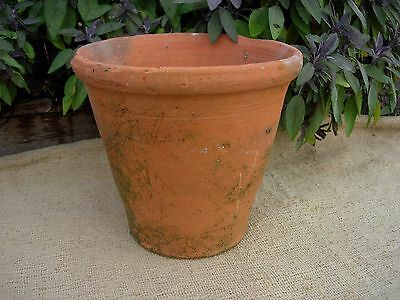 "Rare Old  Hand Thrown  Terracotta Plant Pots  9.75"" Diameter (71)"