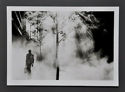 Trent Parke Limited Edition Photo 17x24cm Martin Place Sydney 2001 B&W Art Kunst