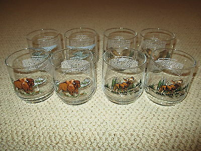 Lot Of 8 Libbey Glasses American Wildlife Whale Moose Eagle Bison Hard To Find