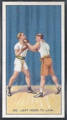 Carreras-The Science Of Boxing Series (Black Cat Back)-#20- Quality Card!!!