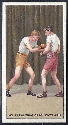 Carreras-The Science Of Boxing Series (Black Cat Back)-#43- Quality Card!!!