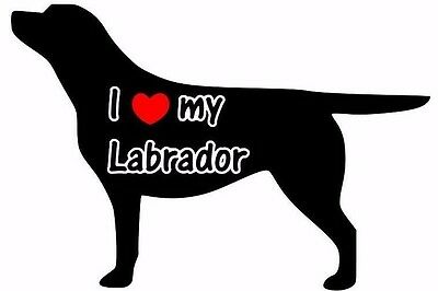 I Love My Labrador Car Sticker Looks Fab Must See.